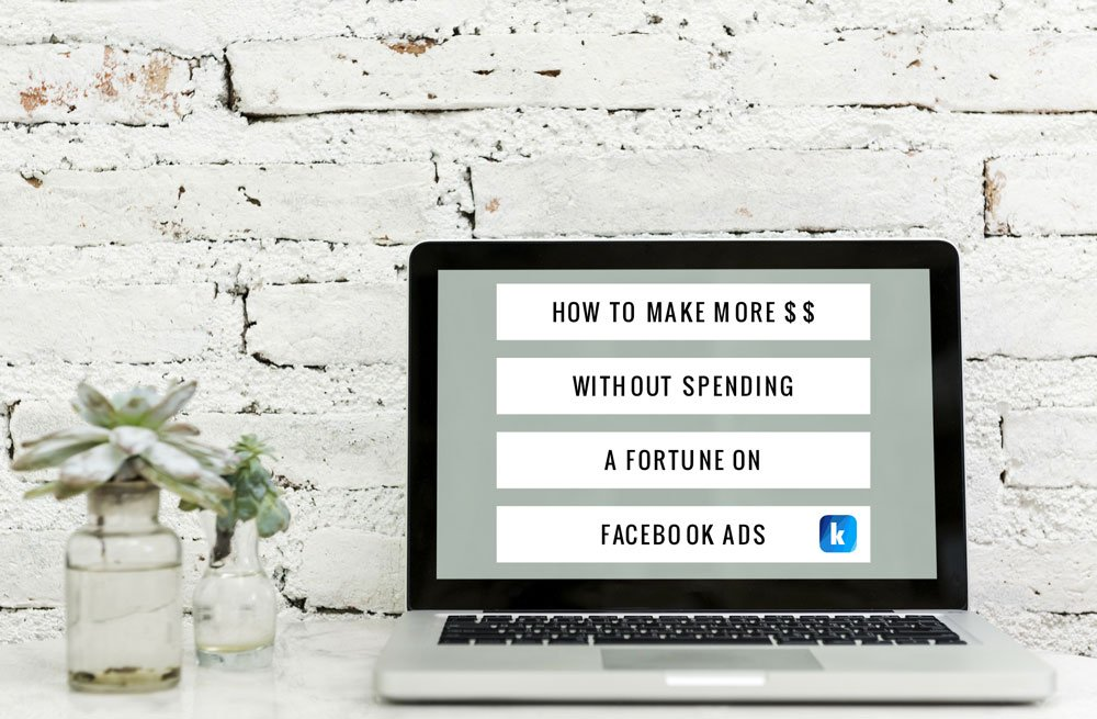 How to Make More Money without Spending a Fortune on Facebook Ads